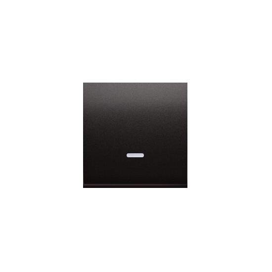 Simon 54 Klawisz pojedynczy z oczkiem do łączników i przycisków podświetlanych antracyt, metalizowany  DKW1L/48