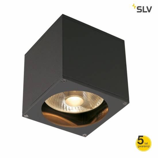 Lampa elewacyjna BIG THEO WALL OUT 229565 SLV Spotline